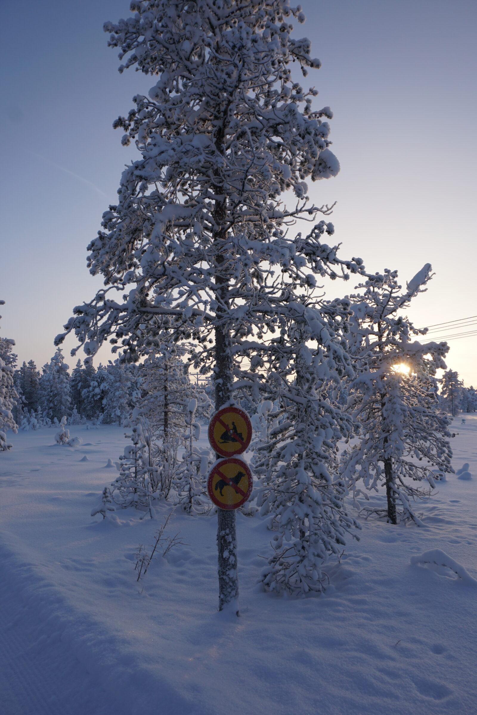 Kittilä Finland, Feb 2019